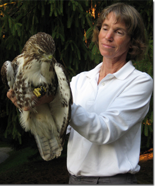 Celeste Maiorana with a hawk